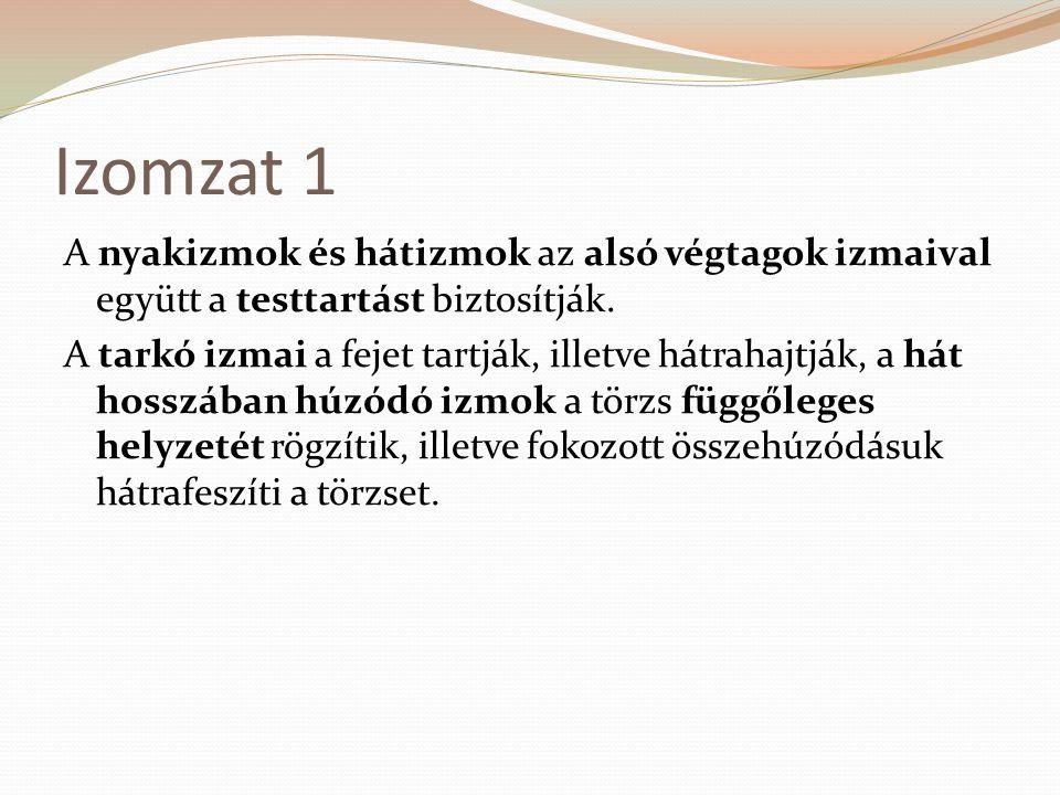 Izomzat 1