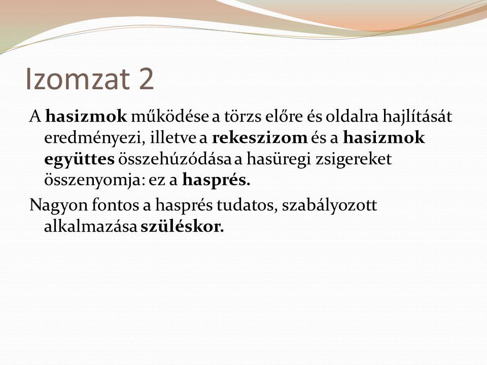 Izomzat 2