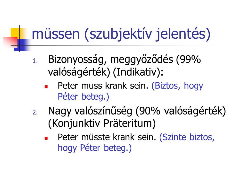 müssen (szubjektív jelentés)