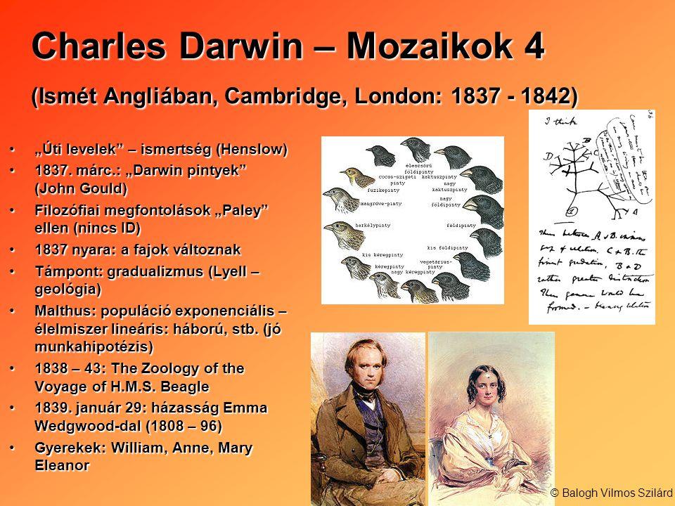 Charles Darwin – Mozaikok 4 (Ismét Angliában, Cambridge, London: 1837 - 1842)
