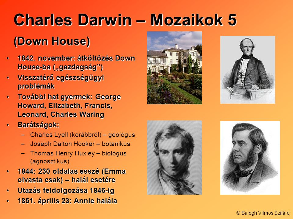 Charles Darwin – Mozaikok 5 (Down House)