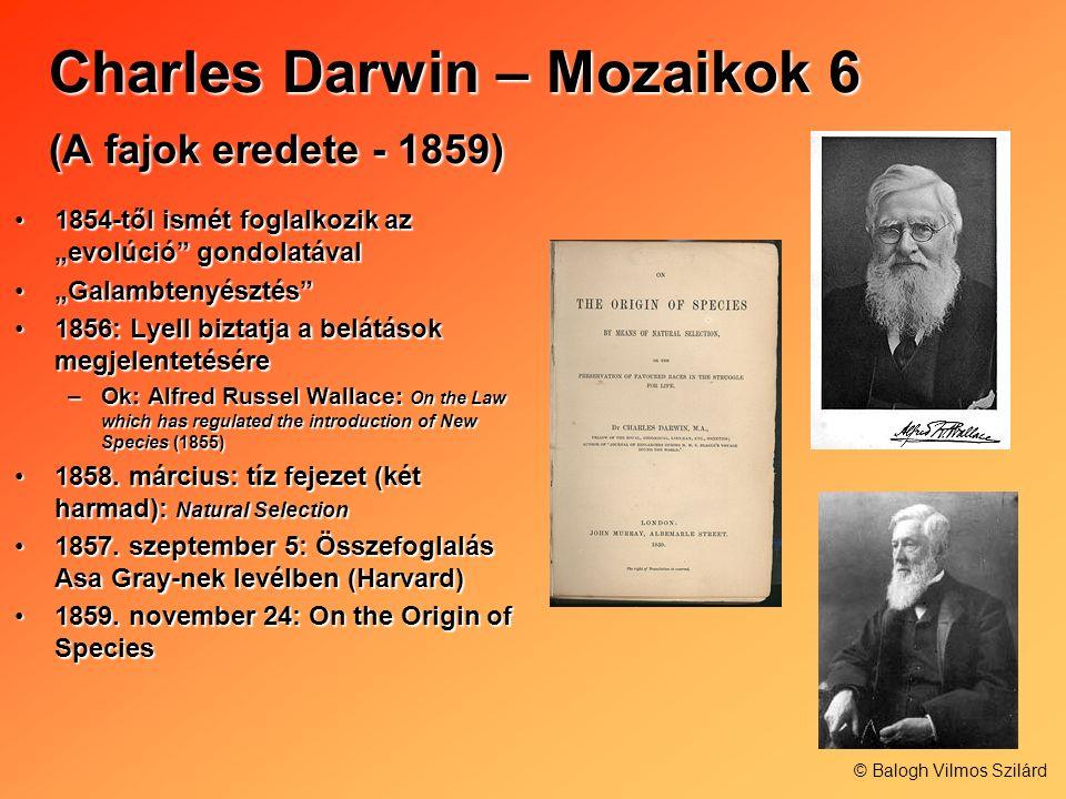Charles Darwin – Mozaikok 6 (A fajok eredete - 1859)