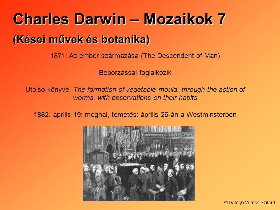 Charles Darwin – Mozaikok 7 (Kései művek és botanika)