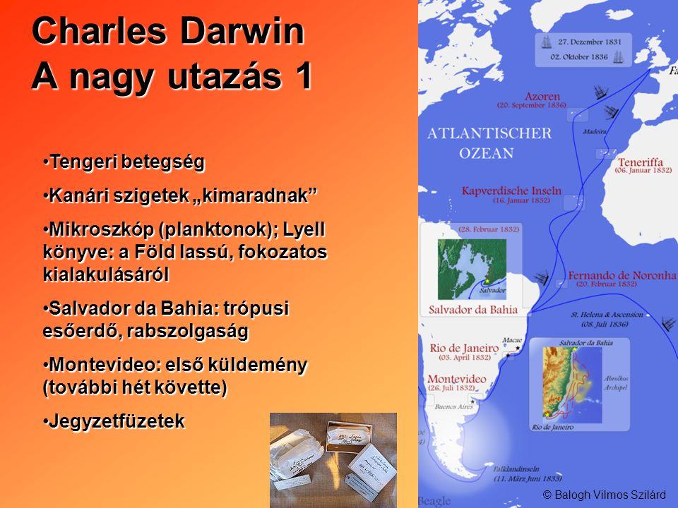 Charles Darwin A nagy utazás 1