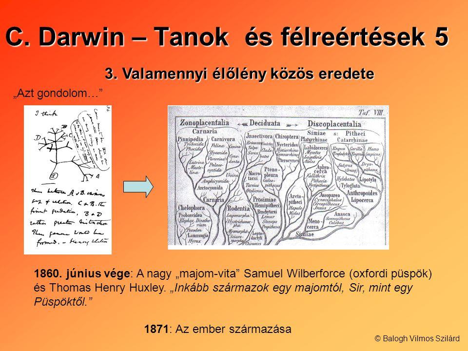 C. Darwin – Tanok és félreértések 5