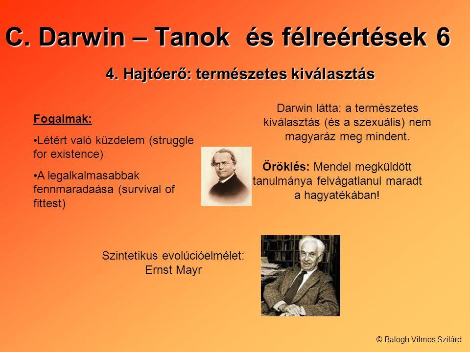 C. Darwin – Tanok és félreértések 6