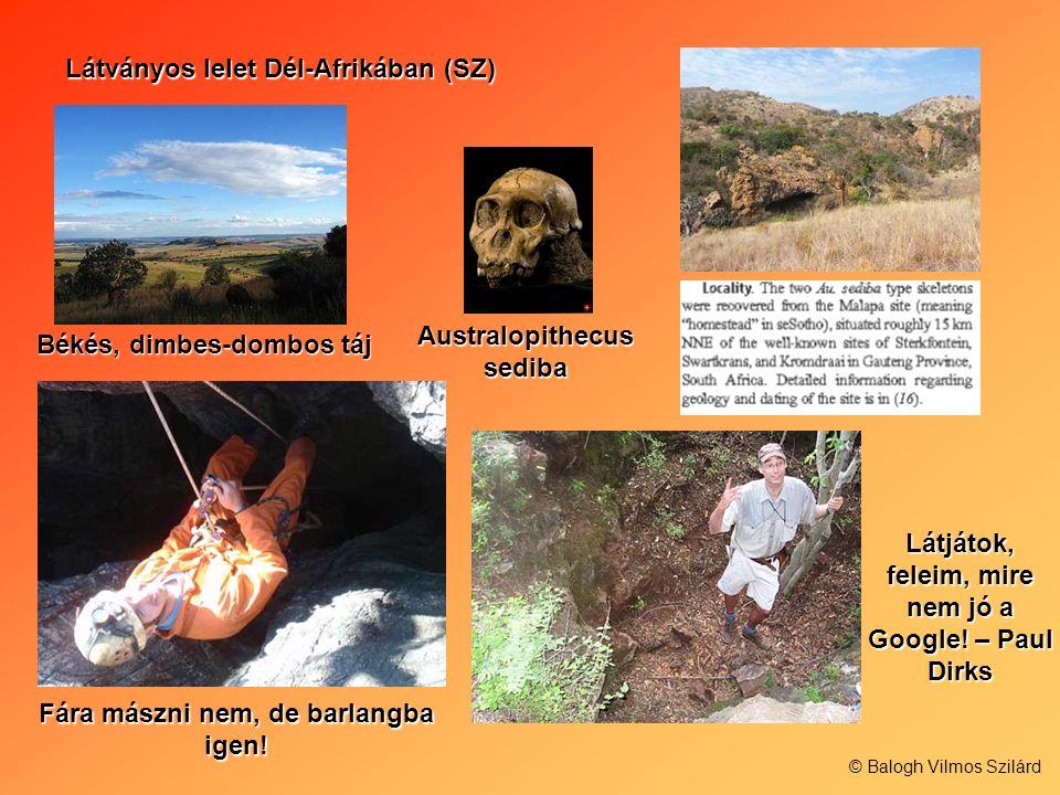 Látványos lelet Dél-Afrikában (SZ)