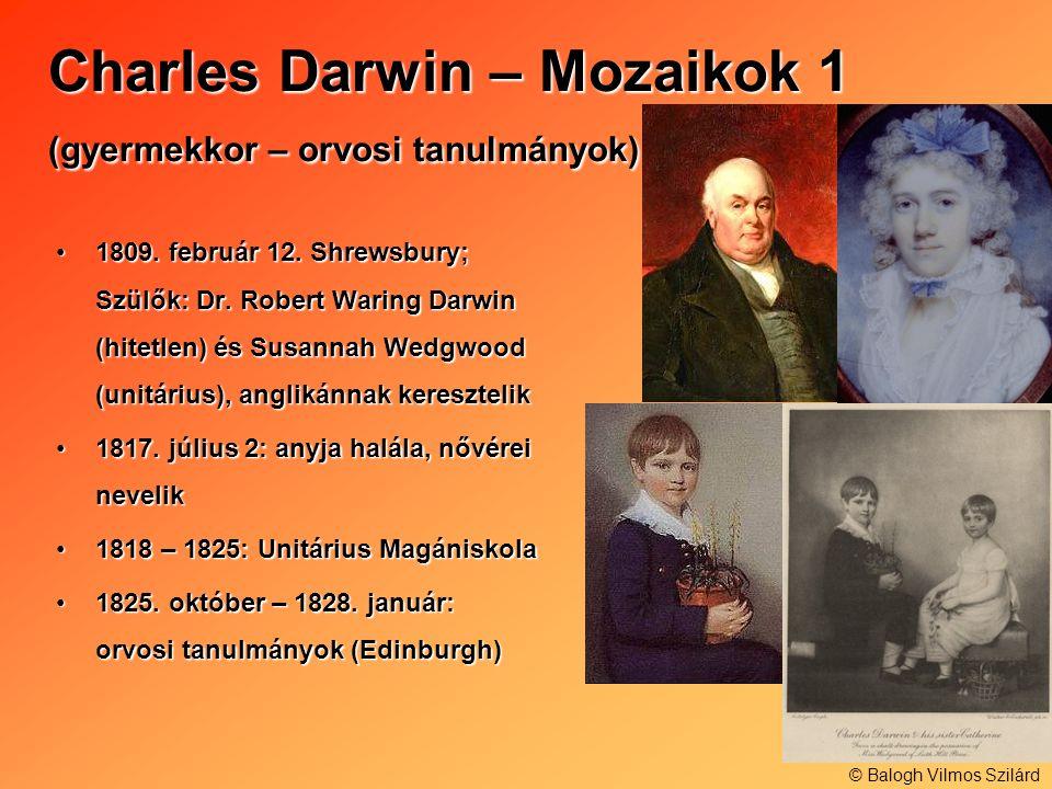 Charles Darwin – Mozaikok 1 (gyermekkor – orvosi tanulmányok)