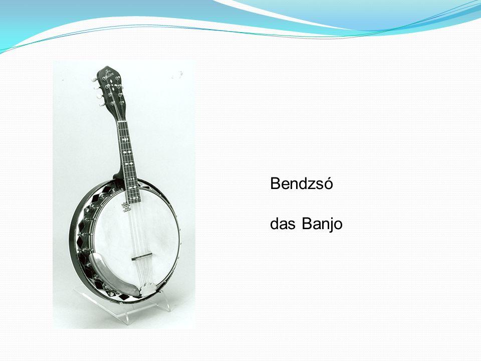 Bendzsó das Banjo