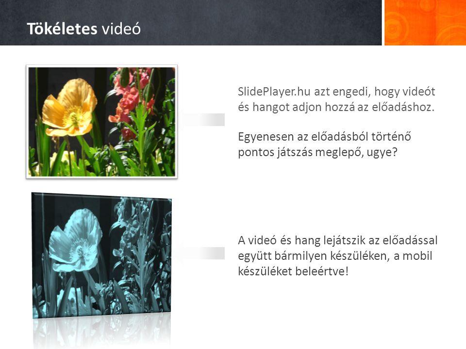 Tökéletes videó SlidePlayer.hu azt engedi, hogy videót és hangot adjon hozzá az előadáshoz.