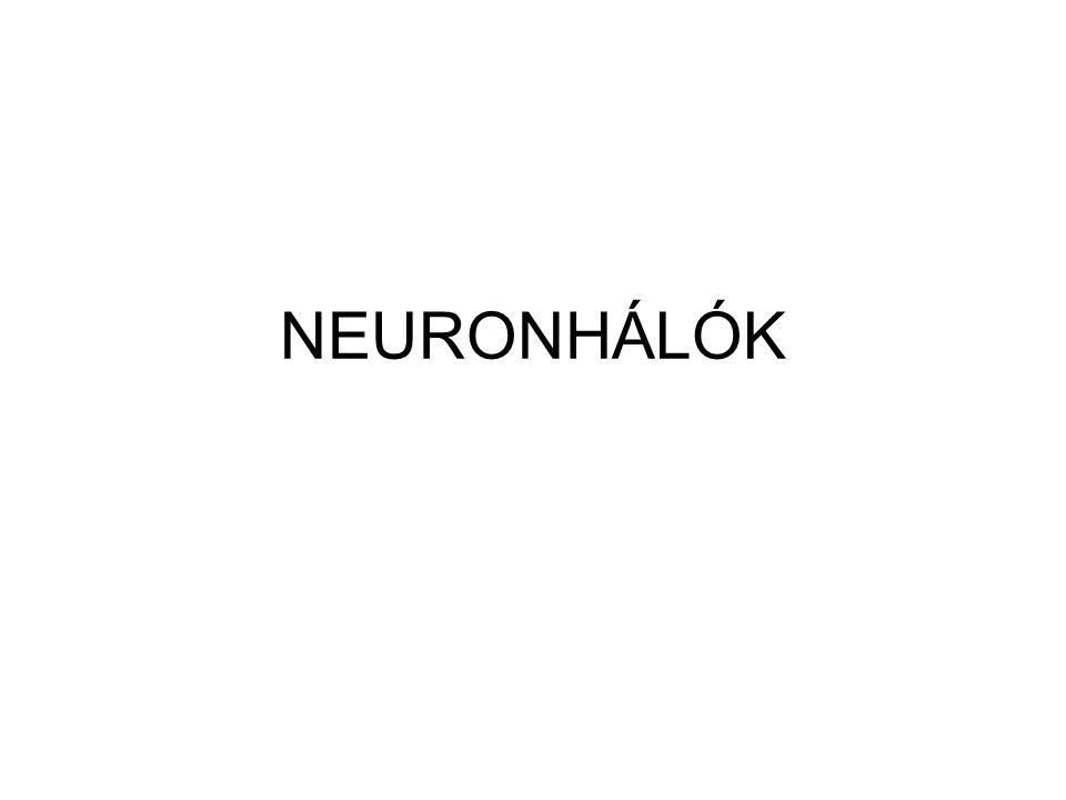 NEURONHÁLÓK
