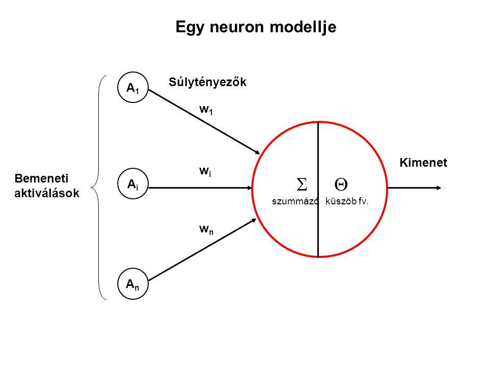  Egy neuron modellje Súlytényezők A1 w1 Kimenet wi