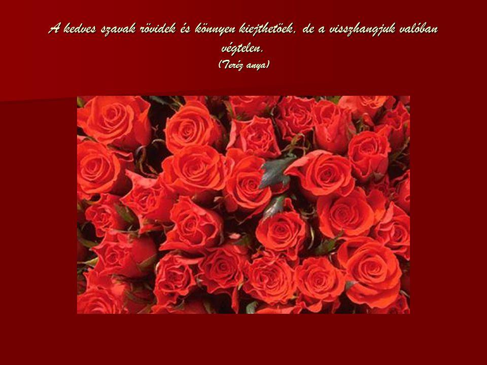 A kedves szavak rövidek és könnyen kiejthetöek, de a visszhangjuk valóban végtelen. (Teréz anya)