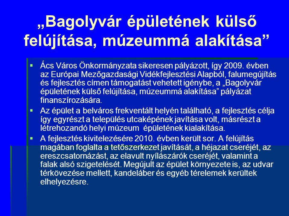 """""""Bagolyvár épületének külső felújítása, múzeummá alakítása"""