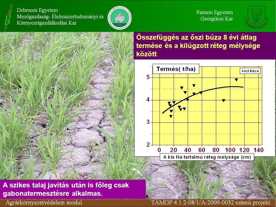 Összefüggés az őszi búza 8 évi átlag termése és a kilúgzott réteg mélysége között