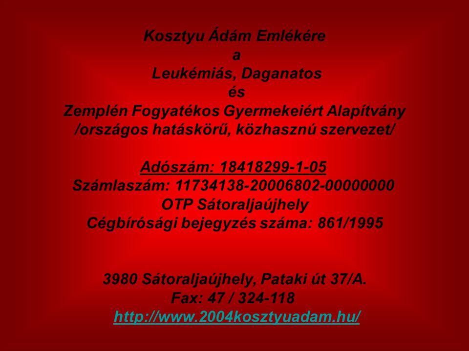 Zemplén Fogyatékos Gyermekeiért Alapítvány