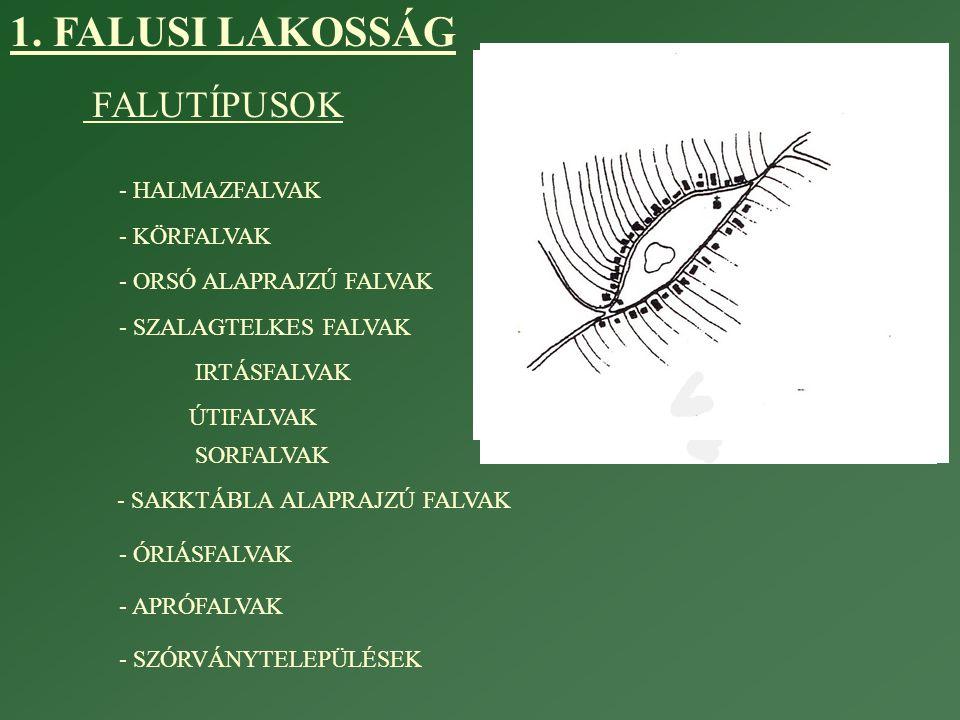 1. FALUSI LAKOSSÁG FALUTÍPUSOK - HALMAZFALVAK - KÖRFALVAK