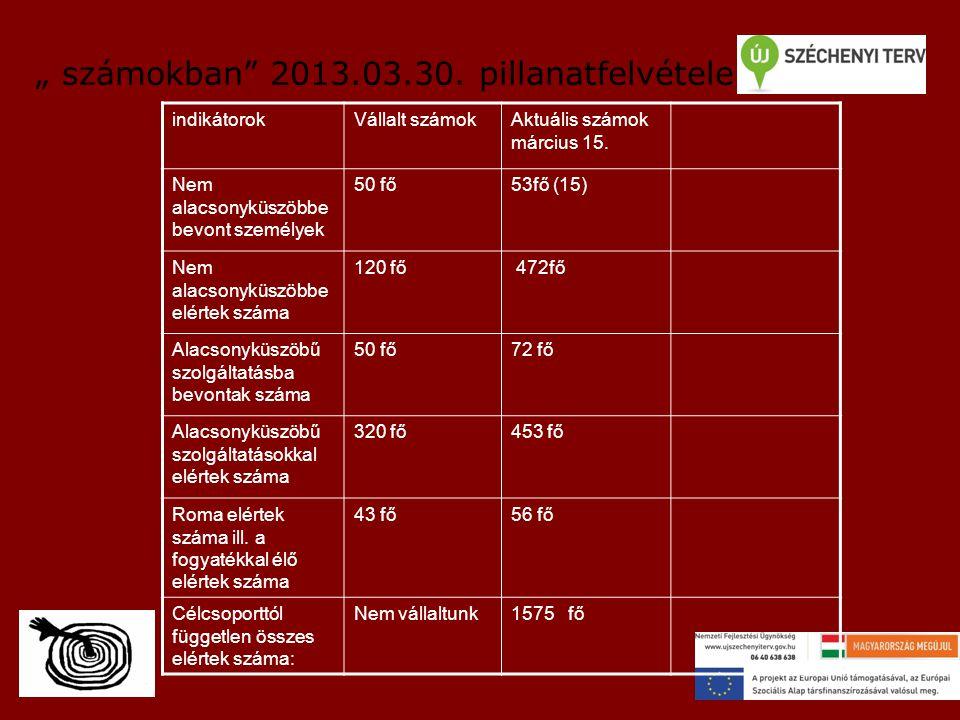 """"""" számokban 2013.03.30. pillanatfelvétele"""