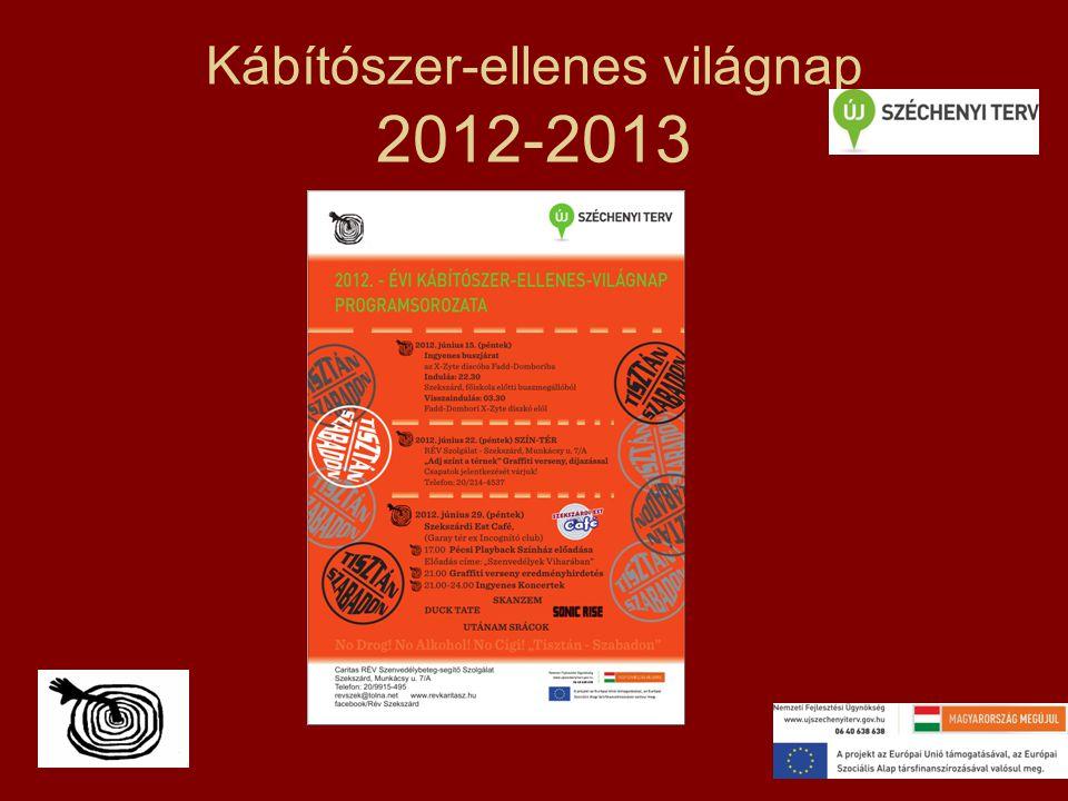 Kábítószer-ellenes világnap 2012-2013