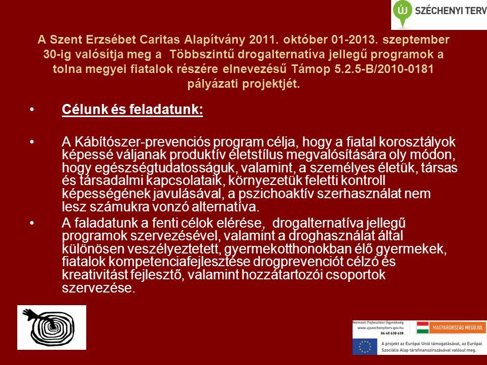 A Szent Erzsébet Caritas Alapítvány 2011. október 01-2013