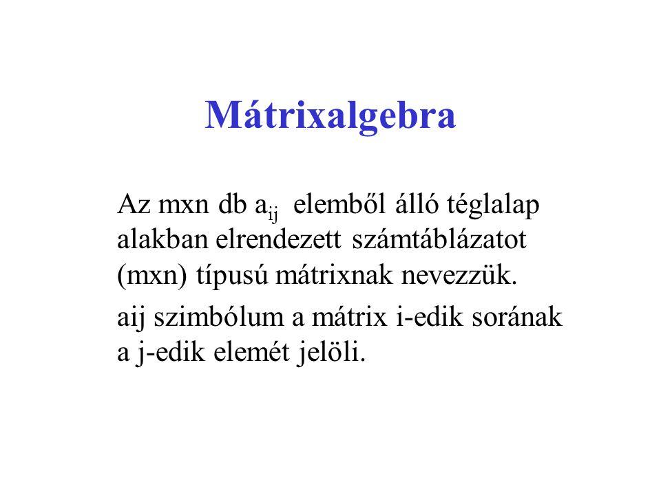 Mátrixalgebra Az mxn db aij elemből álló téglalap alakban elrendezett számtáblázatot (mxn) típusú mátrixnak nevezzük.