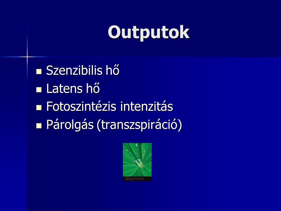 Outputok Szenzibilis hő Latens hő Fotoszintézis intenzitás