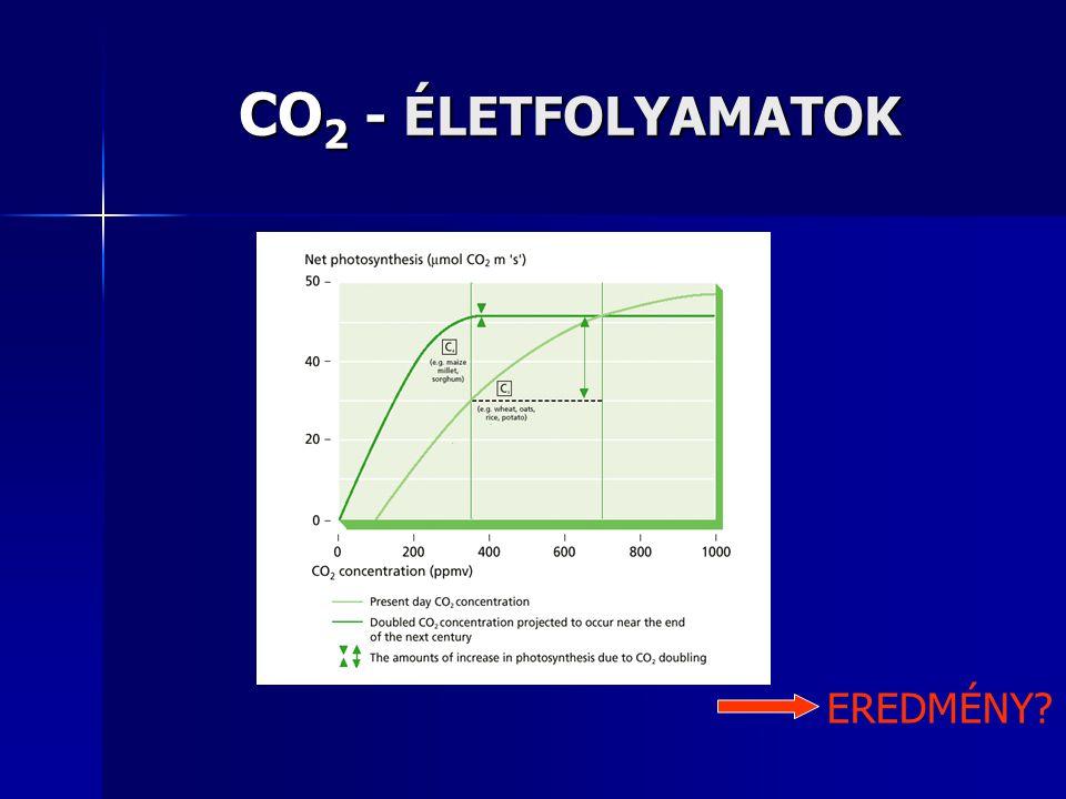 CO2 - ÉLETFOLYAMATOK EREDMÉNY