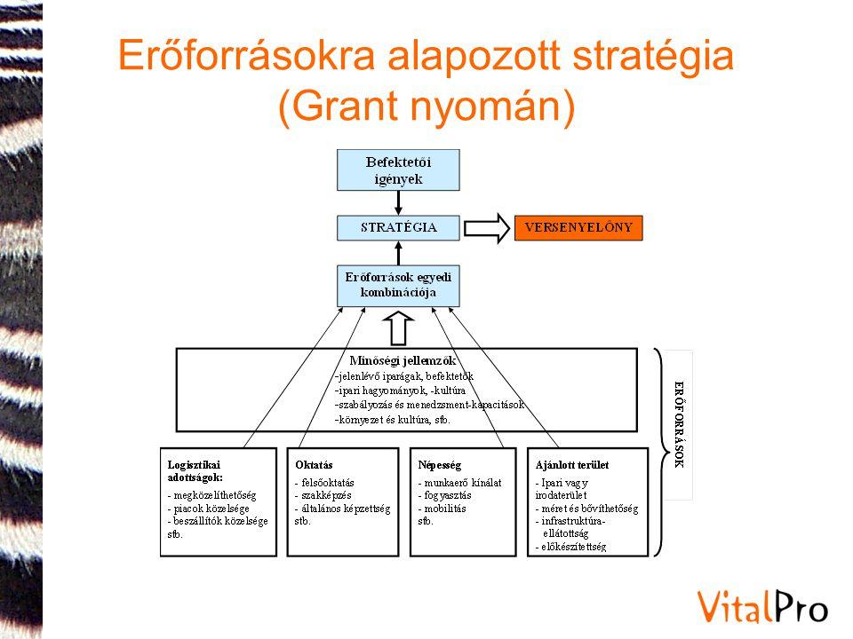 Erőforrásokra alapozott stratégia (Grant nyomán)