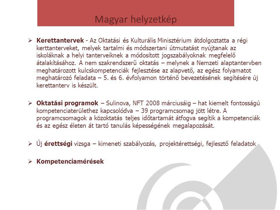 Magyar helyzetkép