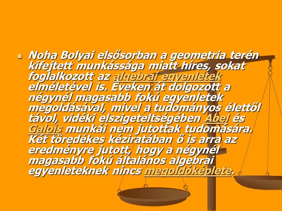 Noha Bolyai elsősorban a geometria terén kifejtett munkássága miatt híres, sokat foglalkozott az algebrai egyenletek elméletével is.