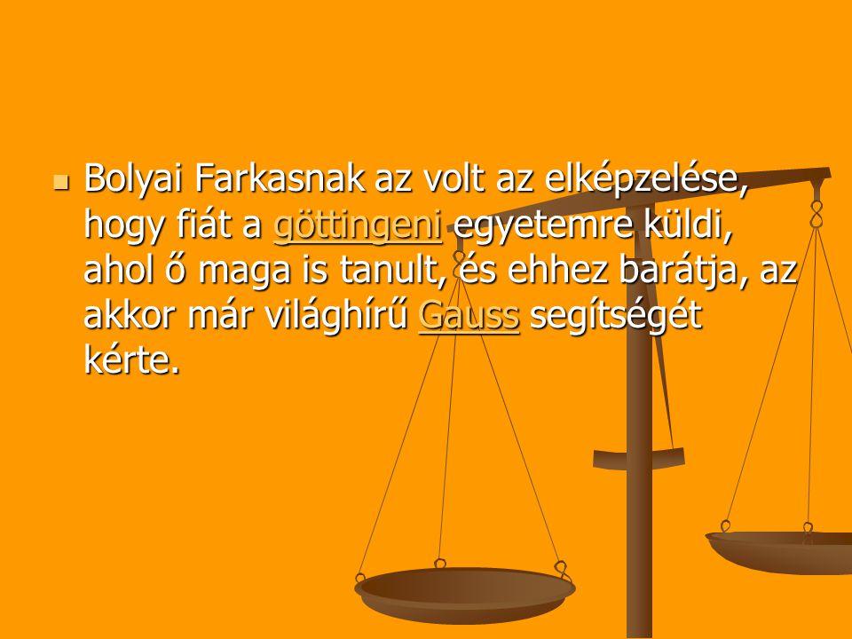 Bolyai Farkasnak az volt az elképzelése, hogy fiát a göttingeni egyetemre küldi, ahol ő maga is tanult, és ehhez barátja, az akkor már világhírű Gauss segítségét kérte.