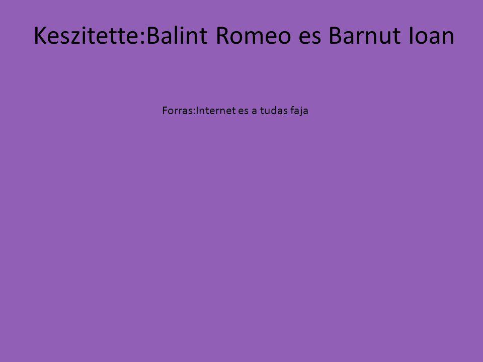 Keszitette:Balint Romeo es Barnut Ioan