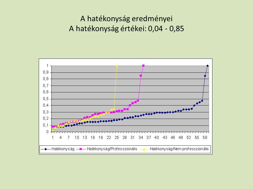 A hatékonyság eredményei A hatékonyság értékei: 0,04 - 0,85