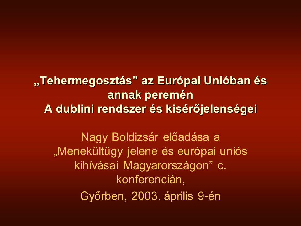"""""""Tehermegosztás az Európai Unióban és annak peremén A dublini rendszer és kisérőjelenségei"""