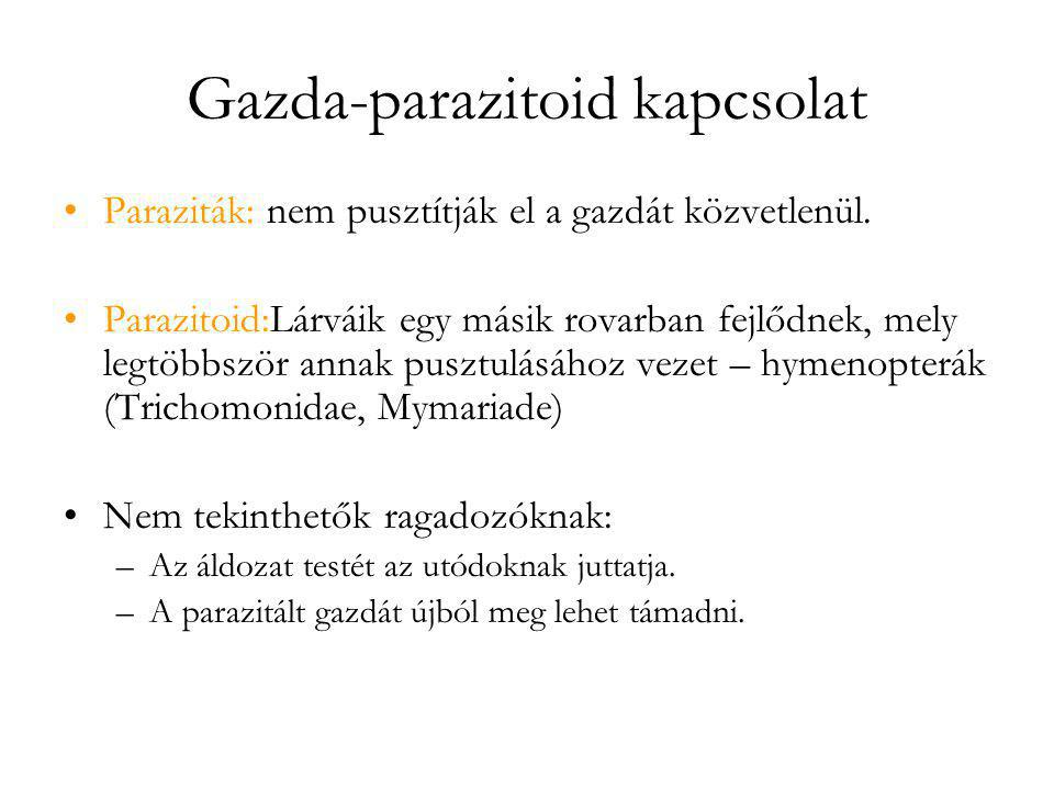 Gazda-parazitoid kapcsolat