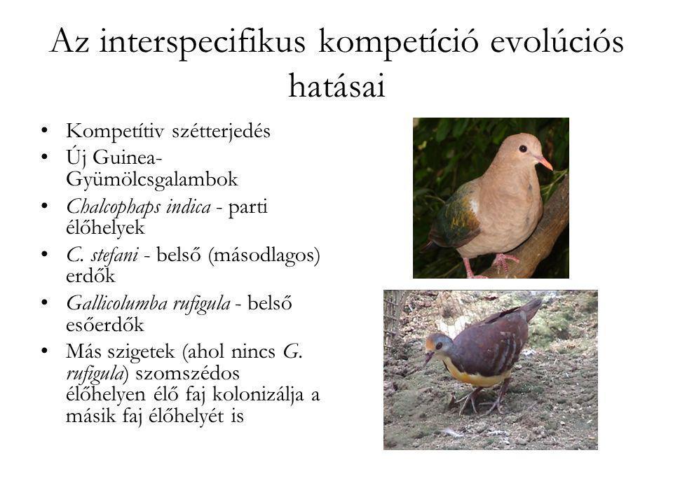 Az interspecifikus kompetíció evolúciós hatásai