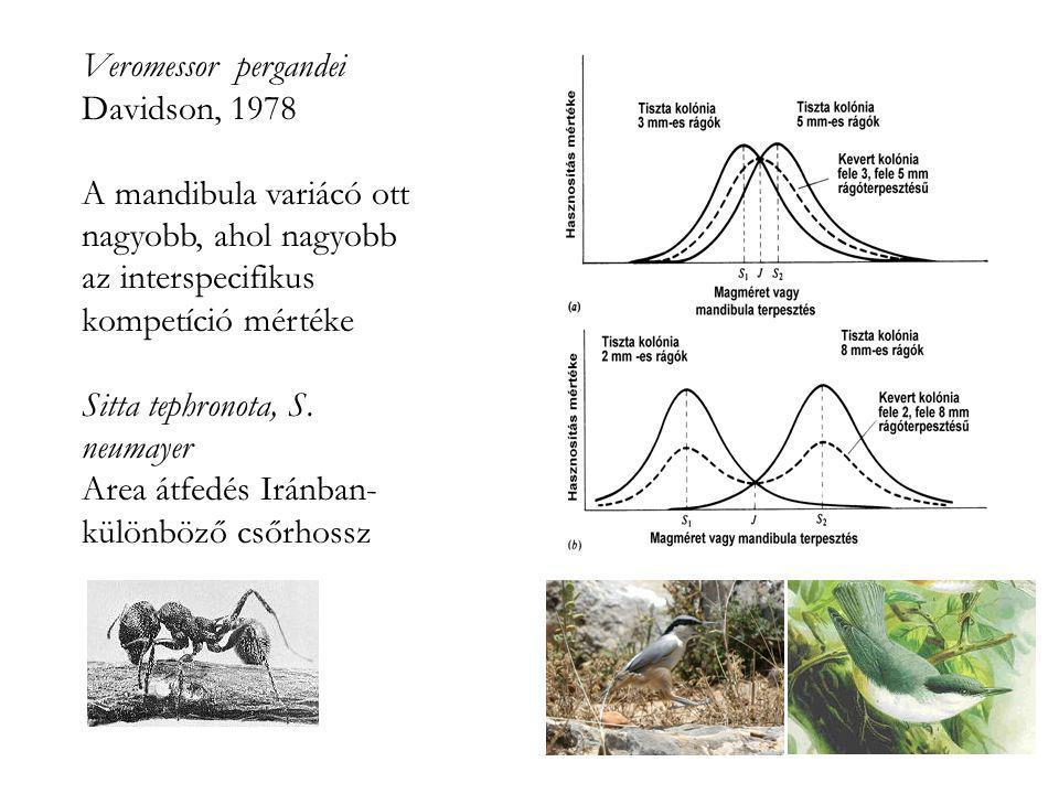 Veromessor pergandei Davidson, 1978. A mandibula variácó ott nagyobb, ahol nagyobb az interspecifikus kompetíció mértéke.