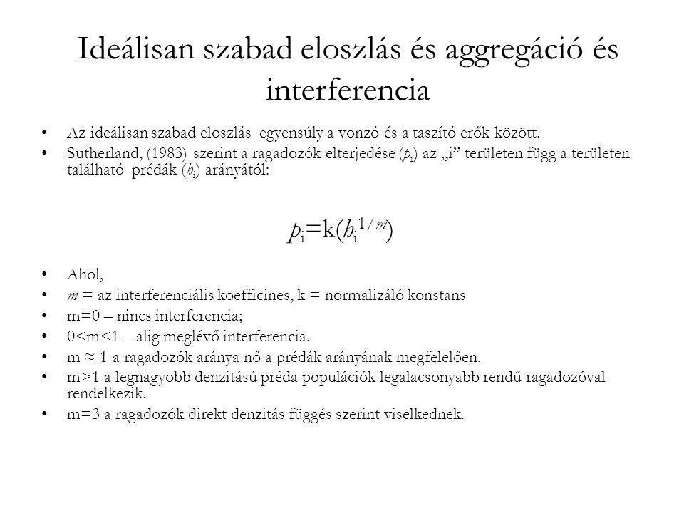 Ideálisan szabad eloszlás és aggregáció és interferencia