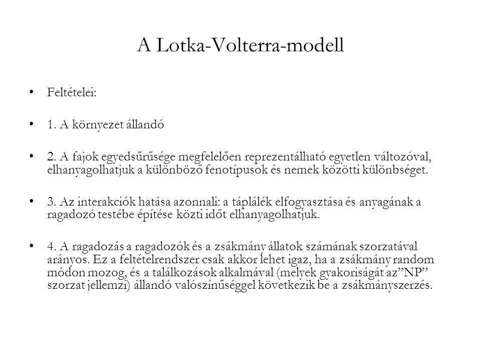 A Lotka-Volterra-modell