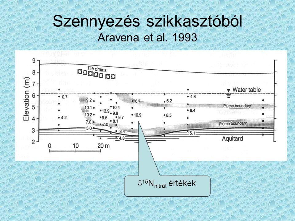 Szennyezés szikkasztóból Aravena et al. 1993