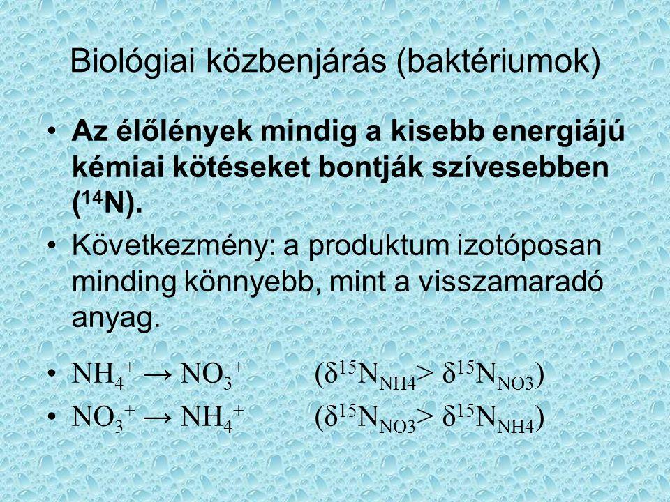 Biológiai közbenjárás (baktériumok)