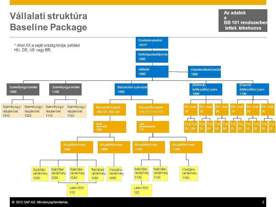 Vállalati struktúra Baseline Package