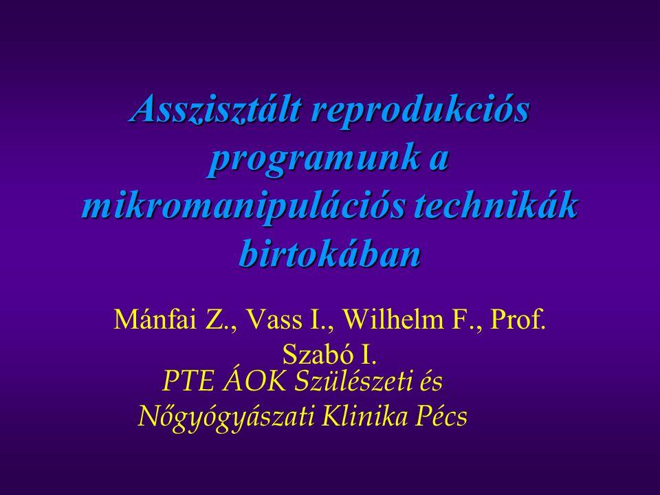 Mánfai Z., Vass I., Wilhelm F., Prof. Szabó I.