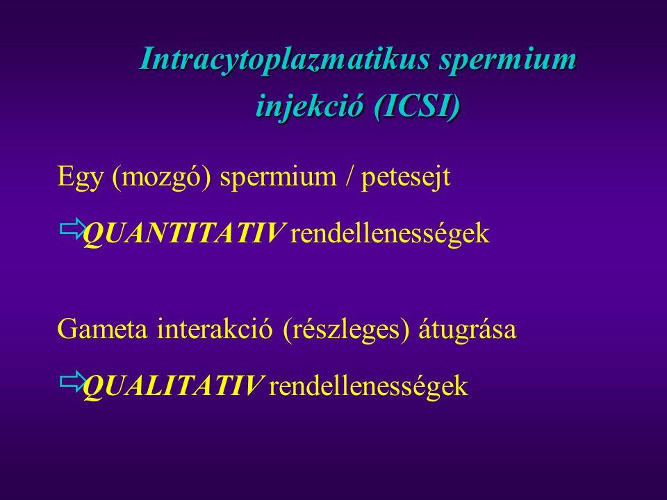 Intracytoplazmatikus spermium injekció (ICSI)