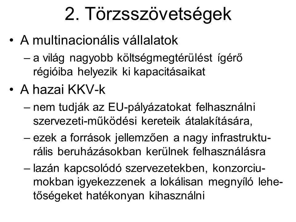 2. Törzsszövetségek A multinacionális vállalatok A hazai KKV-k