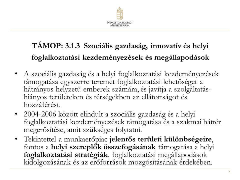 TÁMOP: 3.1.3 Szociális gazdaság, innovatív és helyi foglalkoztatási kezdeményezések és megállapodások