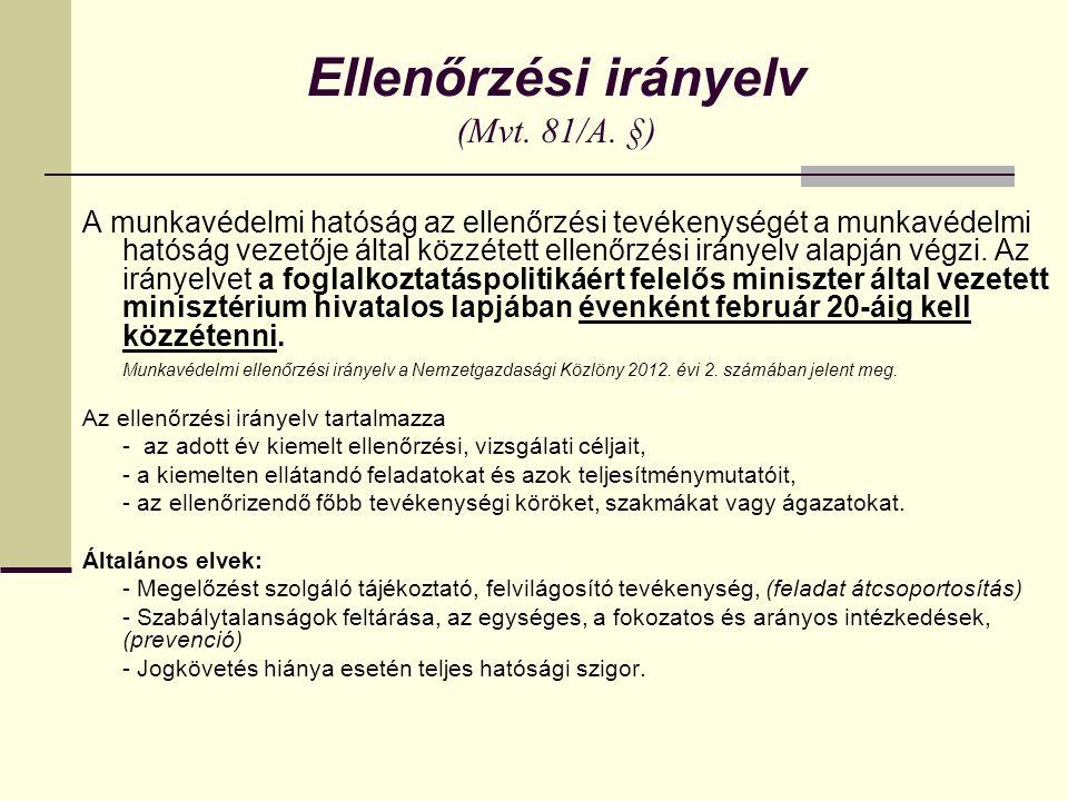 Ellenőrzési irányelv (Mvt. 81/A. §)