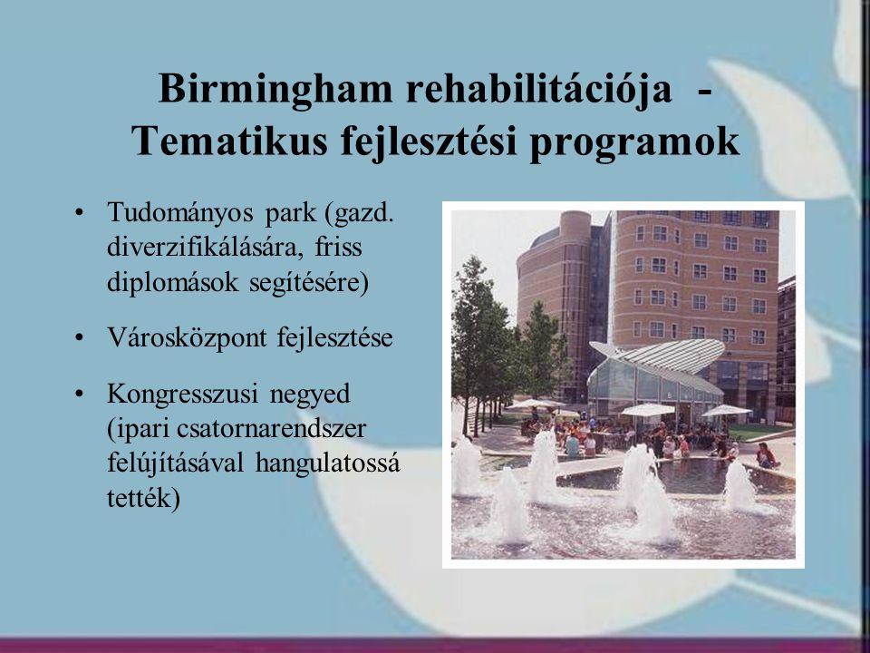 Birmingham rehabilitációja - Tematikus fejlesztési programok
