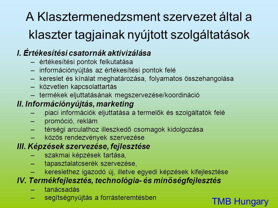 A Klasztermenedzsment szervezet által a klaszter tagjainak nyújtott szolgáltatások