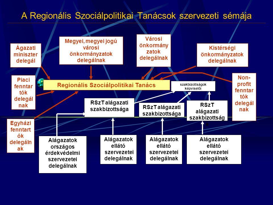 A Regionális Szociálpolitikai Tanácsok szervezeti sémája